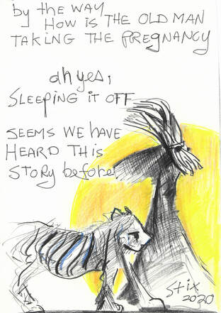 Comic: Mr. Stix walking with Madam Tigress Text: By the way How is the old man taking the pregnancy?  Oh yes, sleeping it off  seems we have heard this story before